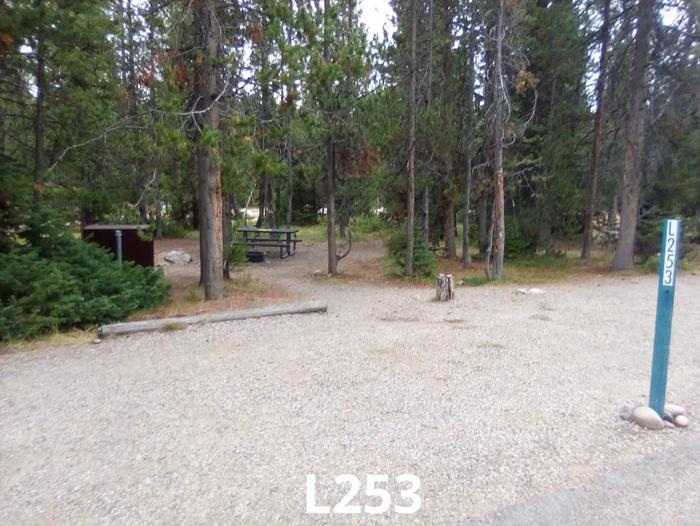 L Loop Site 253