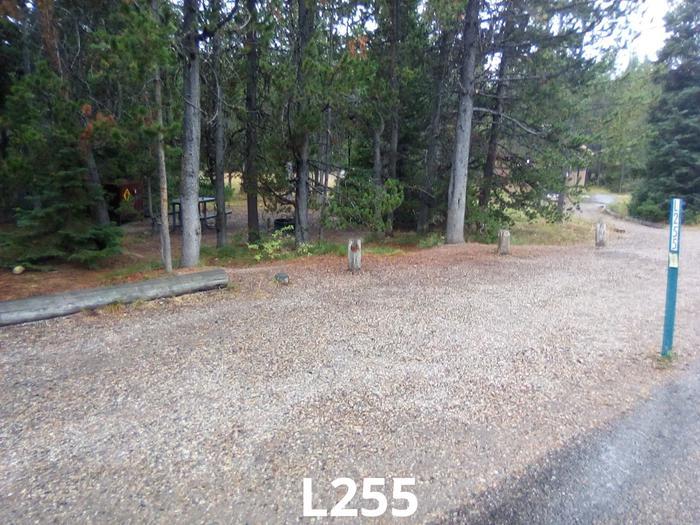 L Loop Site 255