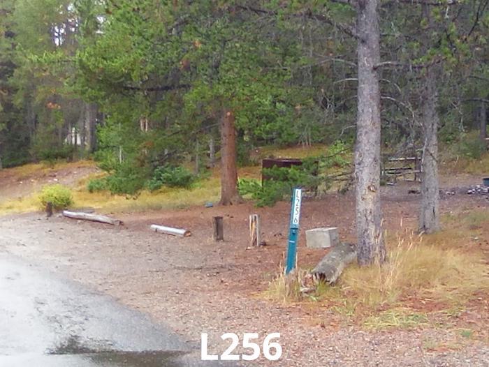 L Loop Site 256