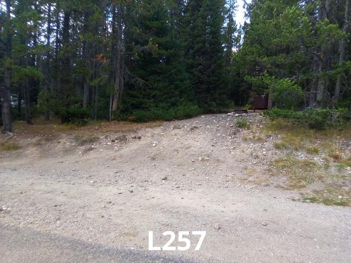 L Loop Site 257