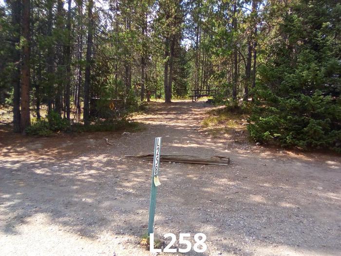 L Loop Site 258
