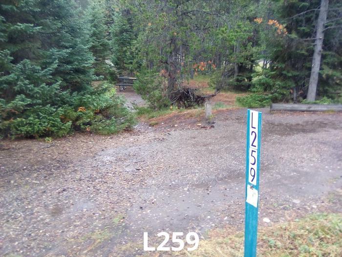 L Loop Site 259