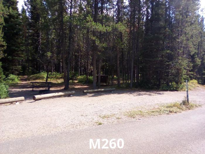 M Loop Site 260
