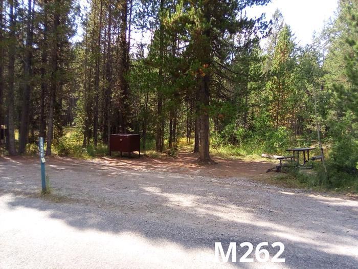 M Loop Site 262