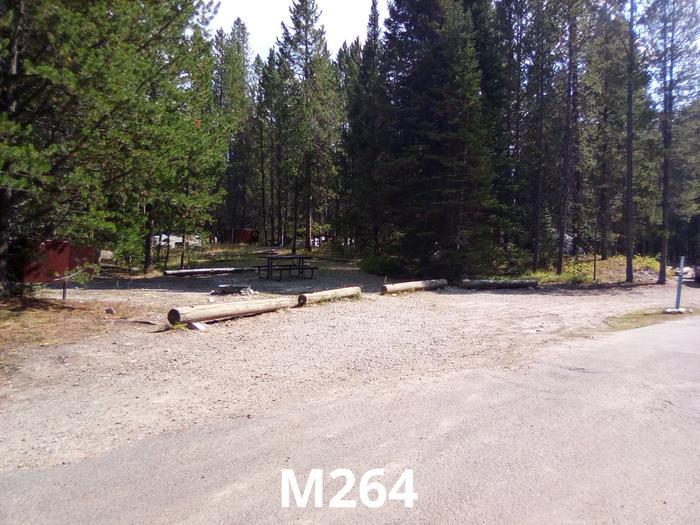 M Loop Site 264
