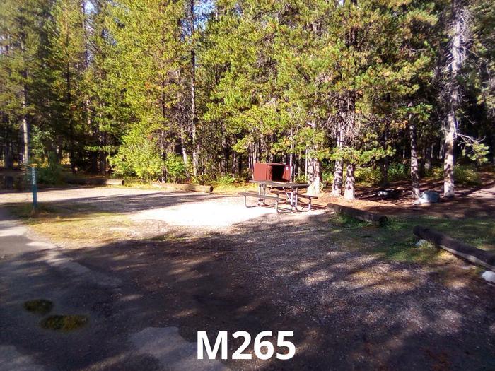 M Loop Site 265