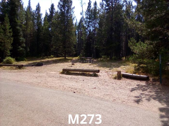 M Loop Site 273