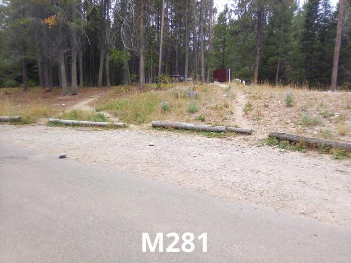 M Loop Site 281