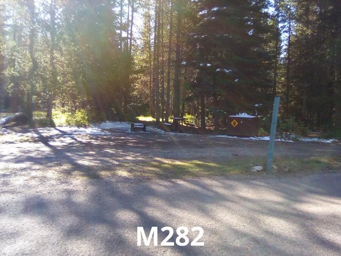 M Loop Site 282