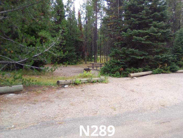 N Loop Site 289
