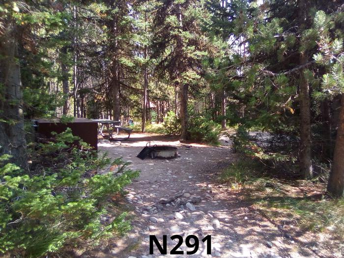 N Loop Site 291
