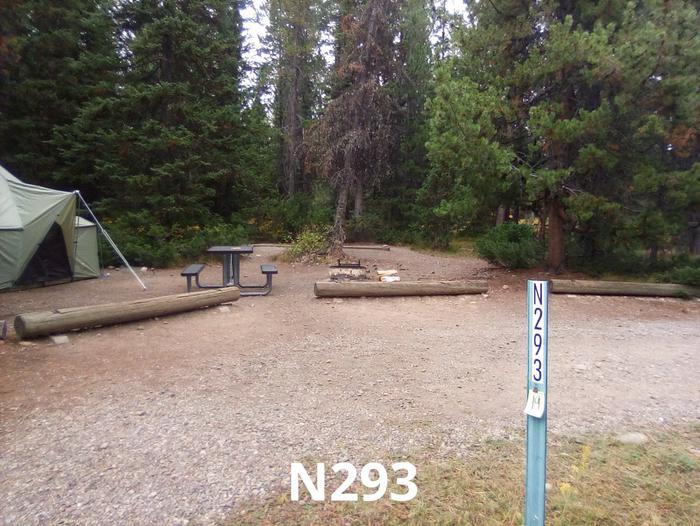 N Loop Site 293