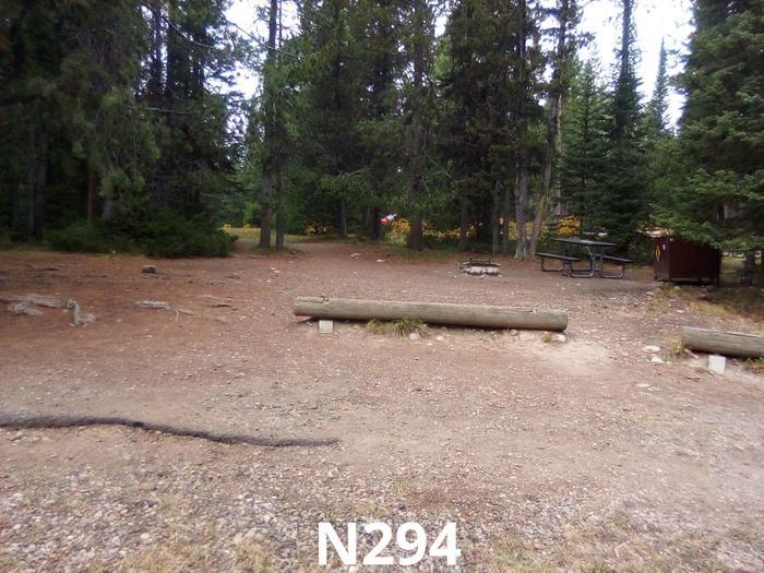 N Loop Site 294