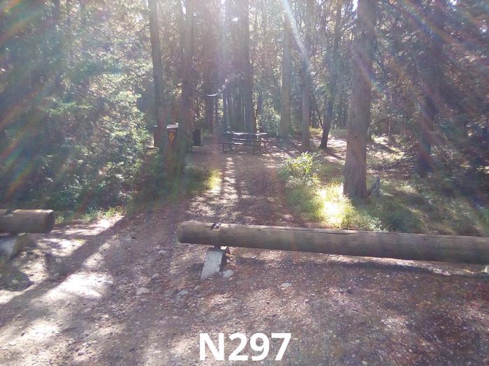 N Loop Site 297