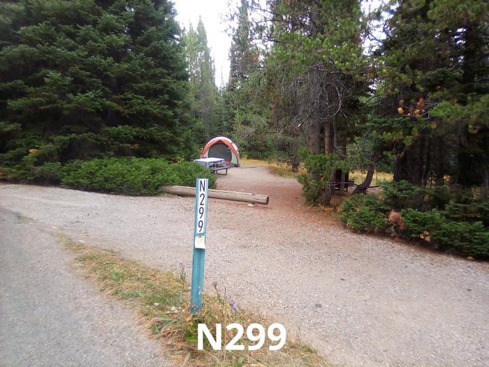 N Loop Site 299