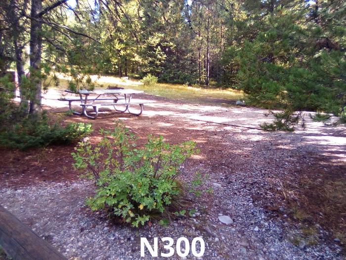 N Loop Site 300