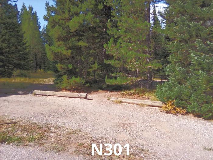N Loop Site 301