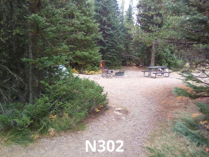 N Loop Site 302