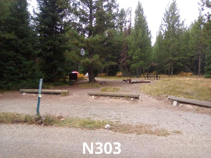 N Loop Site 303