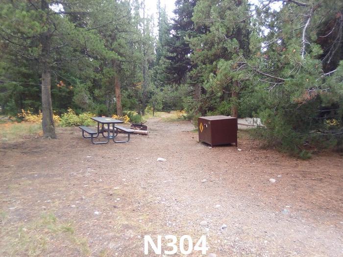 N Loop Site  304