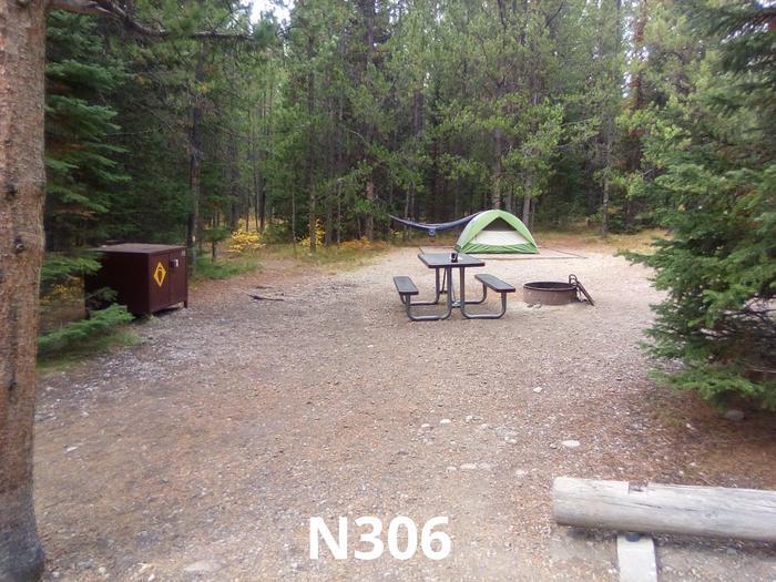 N Loop Site 306