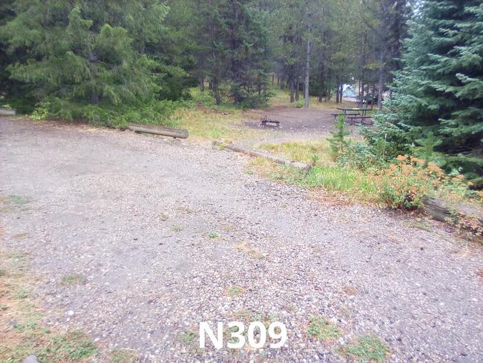N Loop Site 309