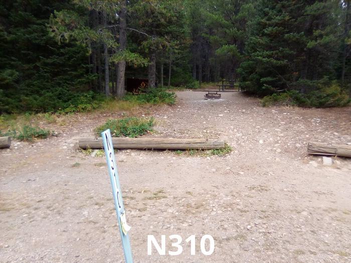 N Loop Site 310