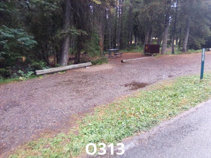 O Loop Site 313