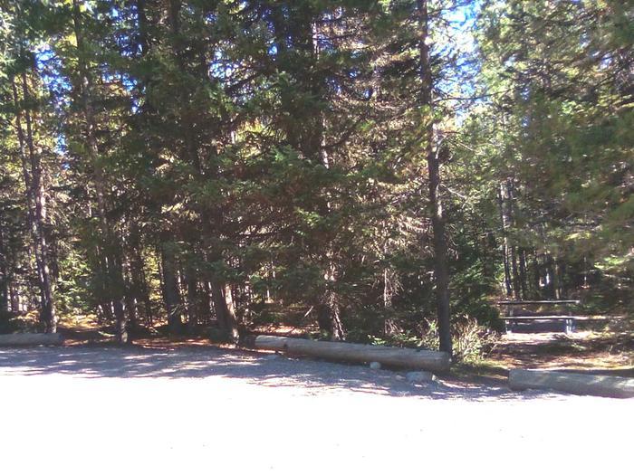 O Loop Site 329