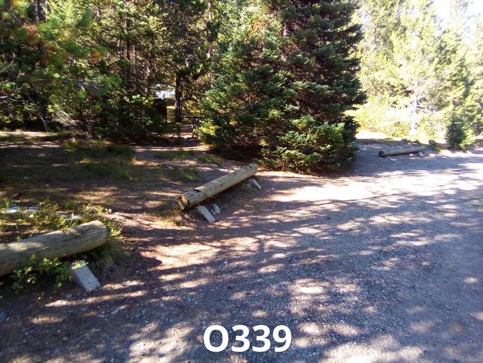 O Loop Site 339