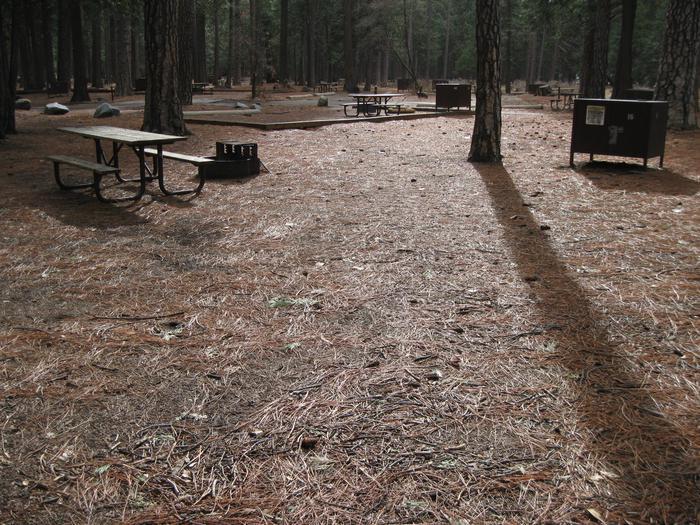 CampsiteCampsite 16