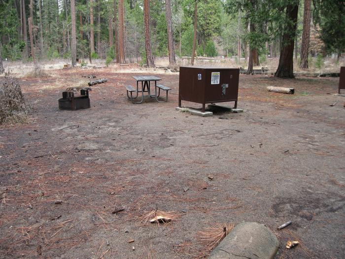 CampsiteCampsite 19