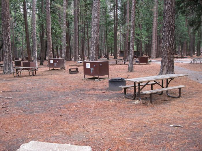 CampsiteCampsite 20