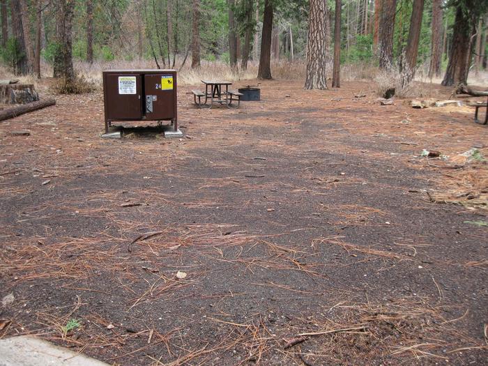CampsiteCampsite 24