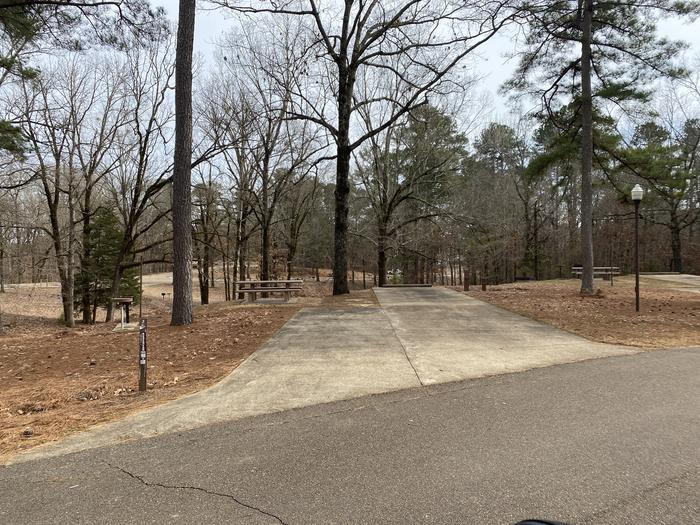 Wallace Creek Site 2