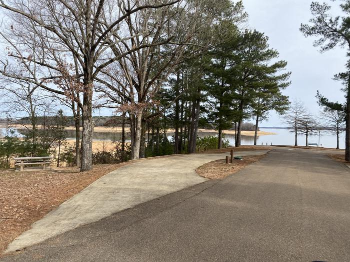 Wallace Creek Site 41