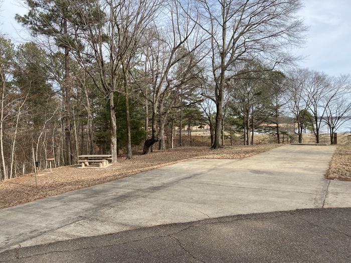 Wallace Creek Site 56