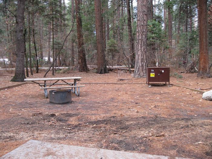 CampsiteCampsite 29