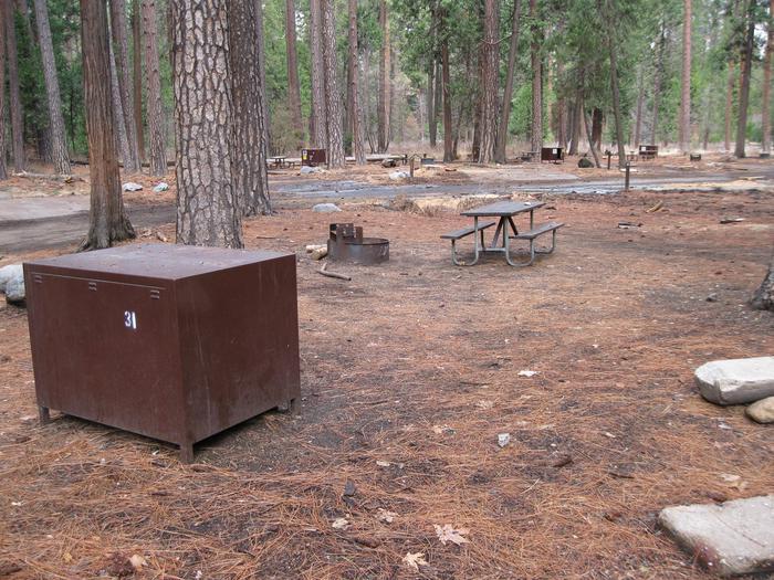CampsiteCampsite 31