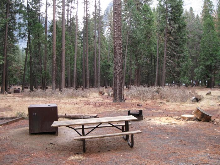 CampsiteCampsite 37