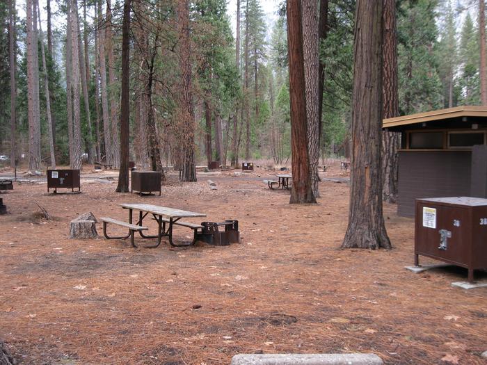CampsiteCampsite 38