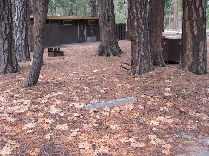 CampsiteCampsite 40