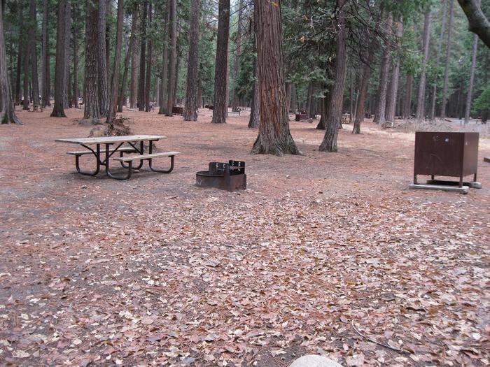 CampsiteCampsite 41