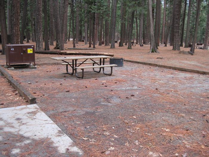 CampsiteCampsite 43