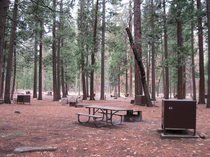CampsiteCampsite 44
