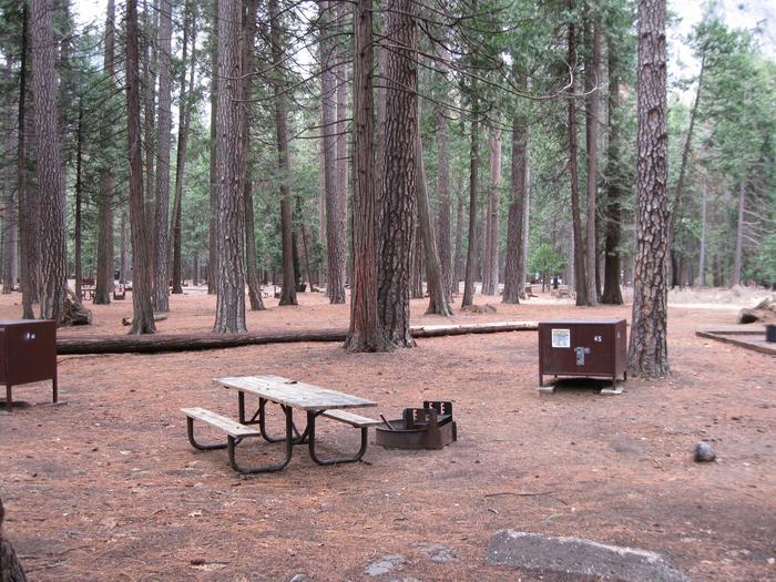 CampsiteCampsite 45