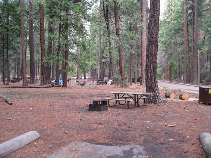 CampsiteCampsite 53