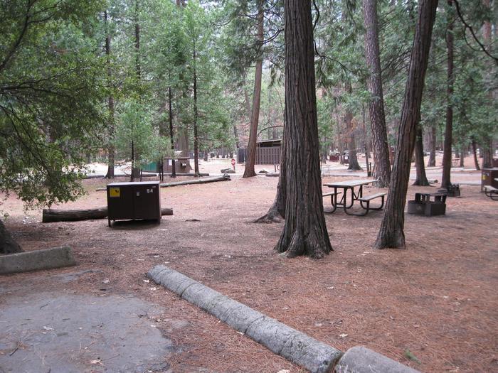 CampsiteCampsite 55