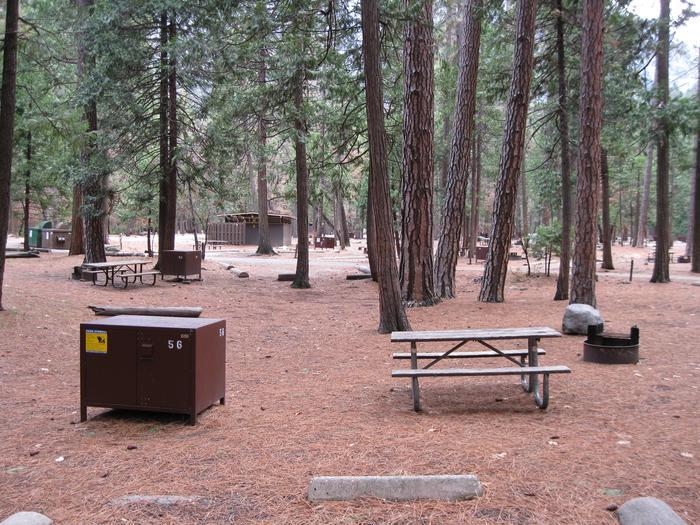CampsiteCampsite 56