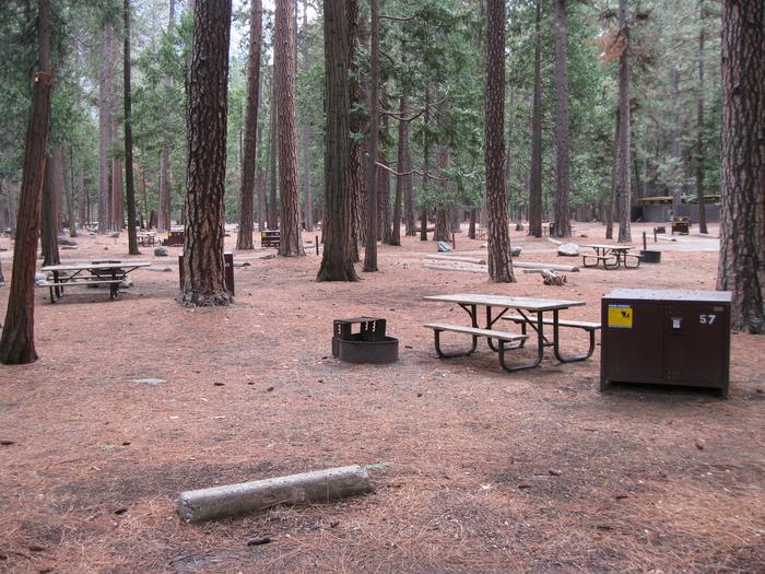CampsiteCampsite 57